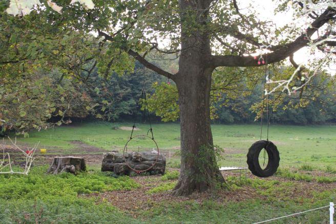 The field playground