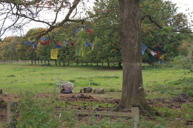 Prayer flags flutter in the breeze